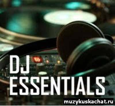 Скачать: VA - DJ Essentials (08.09.2011) бесплатно