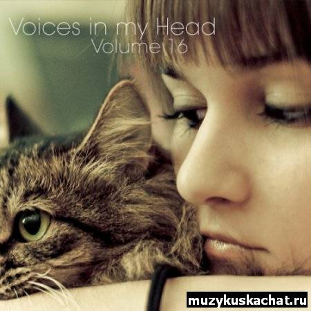 Скачать: VA - Voices in my Head Volume 16 (2011) бесплатно