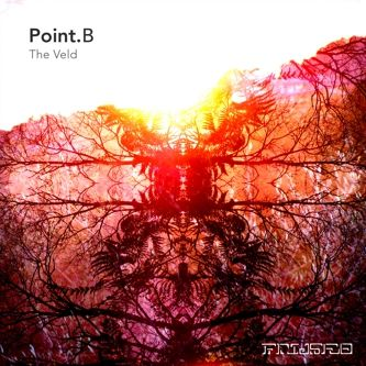 point b the veld